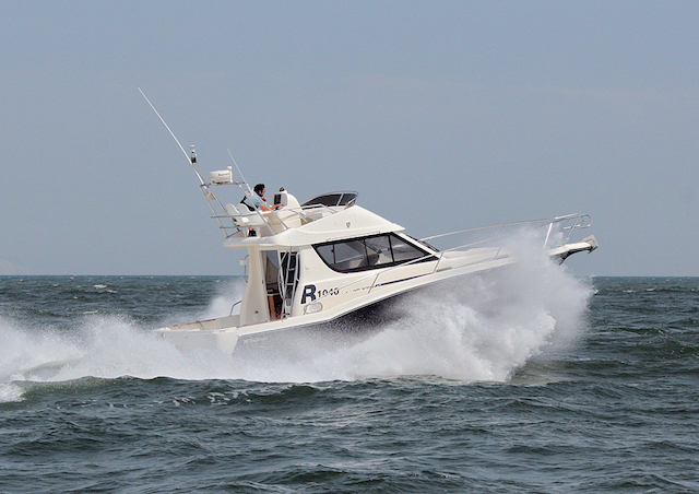 charter pesca